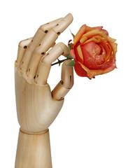 Robot hand holding rose