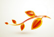 Autumn vector leaves abstract background