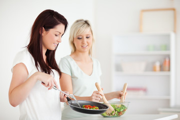 Gorgeous Women cooking dinner