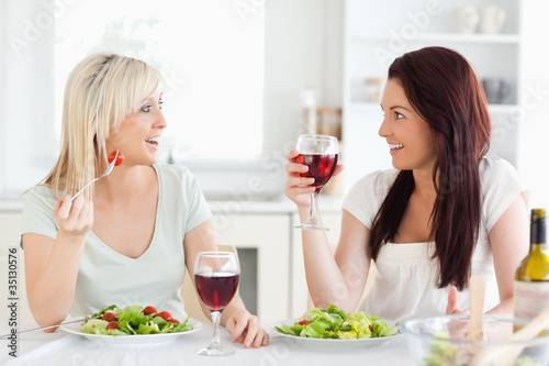 Charming women drinking wine