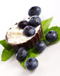 Dessert with blueberry and cottage cheese