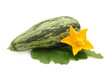 Fresh vegetable marrow with leaf and flower