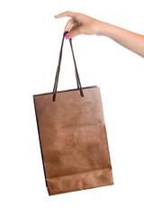Hand Holding a Brown Paper Shopping Bag