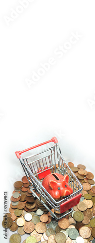 Shopping and saving