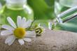 Homöopathie - Tropfen mit Kamille