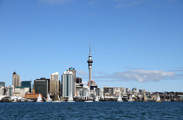 Auckland City, New Zealand by Day 6