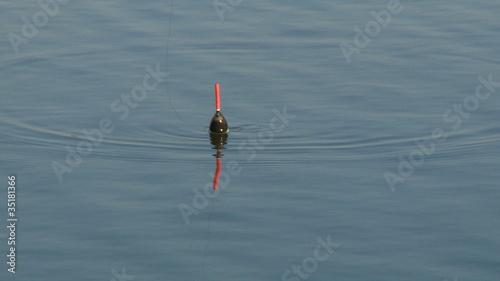 Fishing bobber floating in river