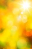 Fototapety Art abstract autumn background