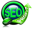 SEO profit green arrow