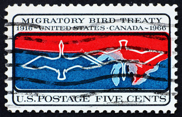 Postage stamp USA 1966 Migratory birds over Canada – U.S. border