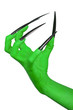 The claw of an evil green witch. White background.