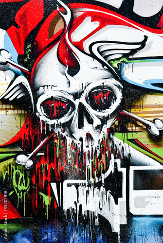 Skull on the wall © sardinelly