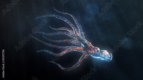 deep sea octopus - 35207316