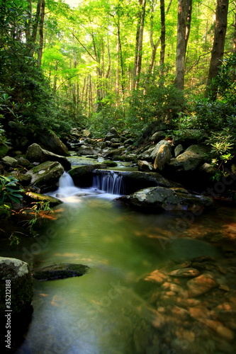 bujny-zielony-strumien-maly-wodospad