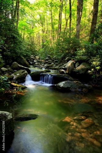 Lush green small waterfall stream