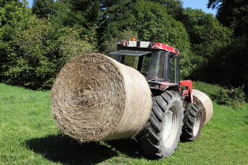 Transporting Hay Bales For Fodder
