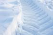 canvas print picture - trace snow