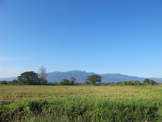 Mountain, field, and  blue sky