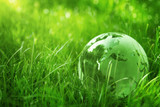 Fototapety Green glass globe in the grass