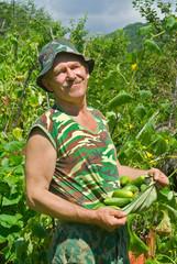 Gardener with cucumbers 2