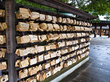 Wishing tablets (ema) at Meiji Shrine , Tokyo