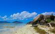 Landscape Exotic Cove