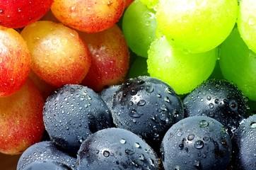 三種の葡萄