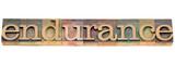 endurance word in letterpress type poster