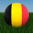 Soccer - Belgium