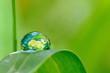 Leinwandbild Motiv Terre écologique.