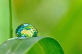 Terre écologique.