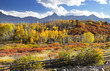 autumn landscape at Dallas divide in Colorado