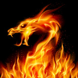 Fototapety Fire Dragon