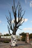 Drzewo pamięci męczeństwa więźniów Pawiaka w Warszawie - 35305969