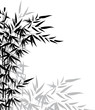 Bamboo leaves in black and white colors for design