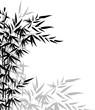 Fototapeten,vektor,asiatisch,hintergrund,bambus