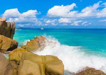 Exotic Foam Shore