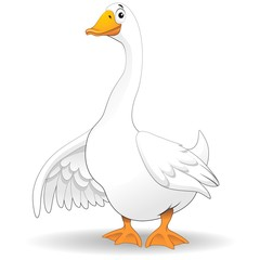 Oca Papero Fumetto-Goose Duck Cartoon-Vector