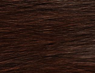 hair sleek brown female