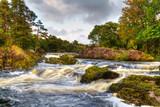 Autumn mountain stream in Killarney National Park, Ireland