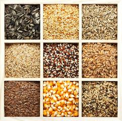Sortiment von Getreide, Samen, Körnern