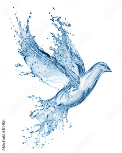 Aluminium Vogel dove made out of water splashes