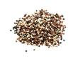 Quinoa Samen isoliert auf weiß