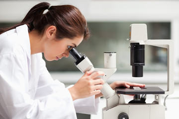 Focused female science student looking in a microscope