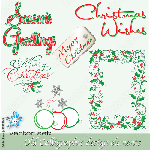 Calligraphic design elements 8