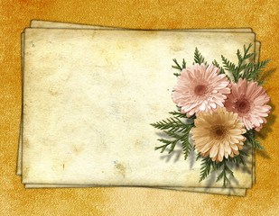 Old paper with chrysanthemum on the abstract background.