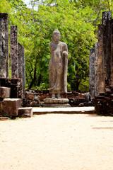 standing buddha in polonnaruwa, sri lanka