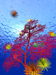 sea fan tree