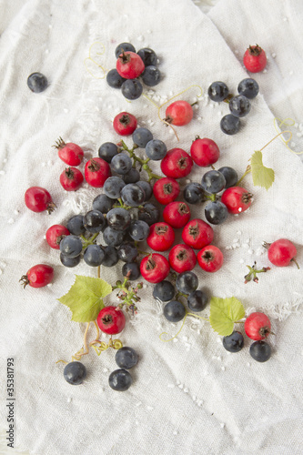Hawthorn and blue grapes