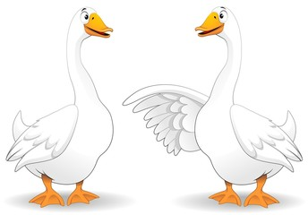 Oche Fumetto Parlando-Goose Duck Talking-Vector